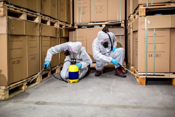 Servicii profesionale și eficiente de dezinfecție și dezinsecție